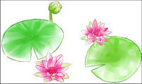 Watercolor style lotus